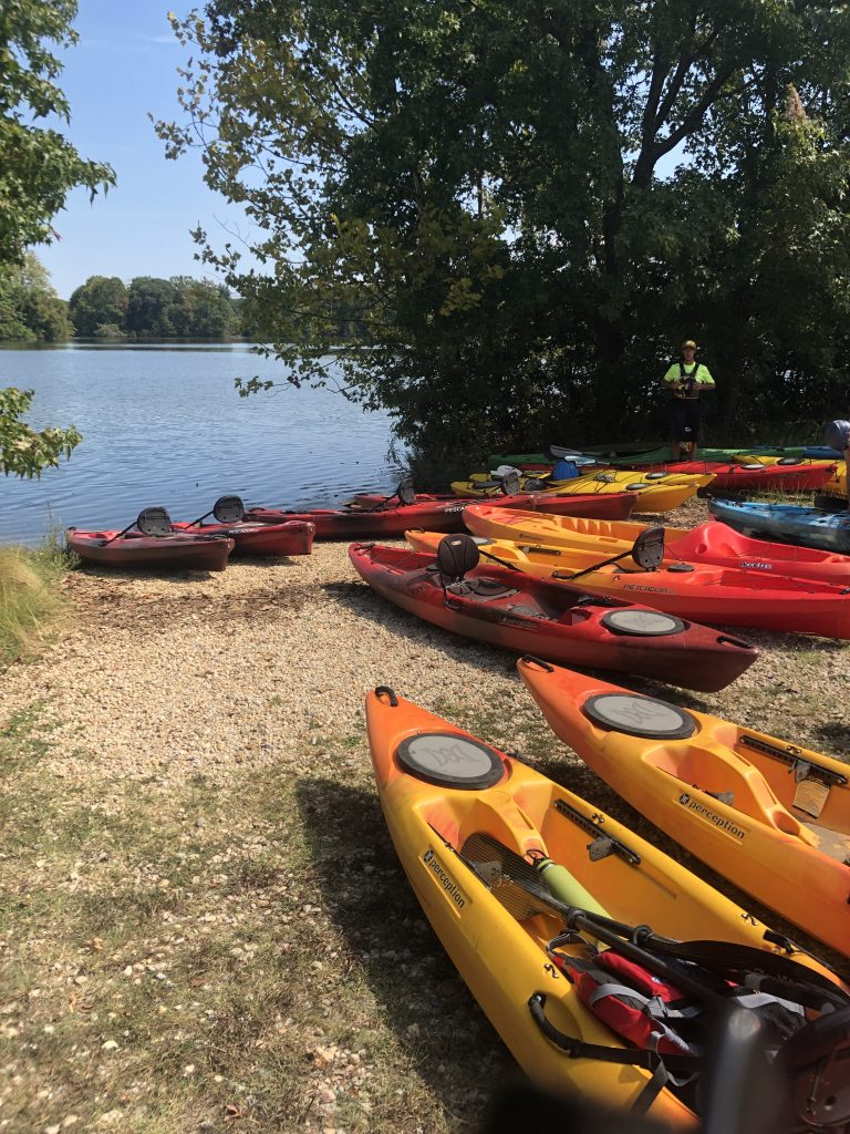 picture of several kayaks